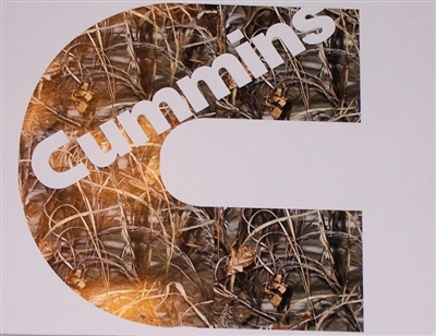 Cummins C M4 Real Tree Camo Decal